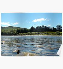 Natures Perfection! - NZ - Southland River Poster