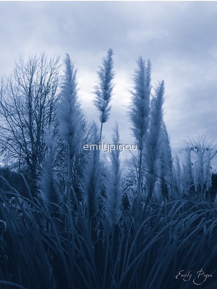 Frozen Dreams by emilypigou