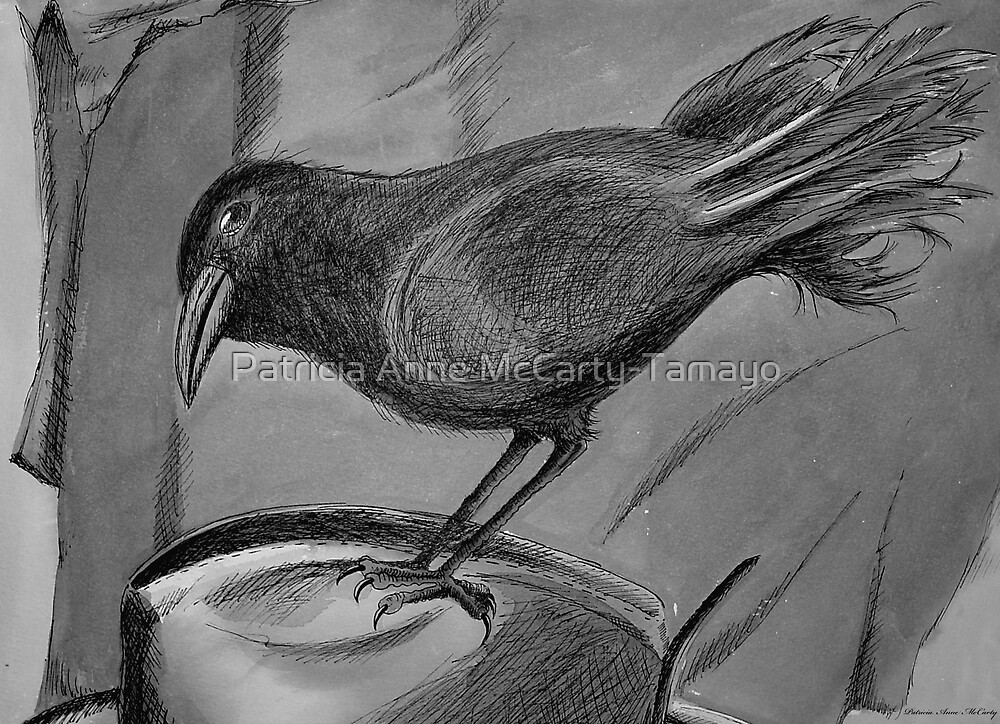 Black Crow Sits on Hat by Patricia Anne McCarty-Tamayo