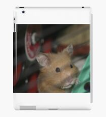 Harry Houdini the Hamster iPad Case/Skin