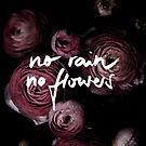 No Rain No Flowers by Mareike Böhmer