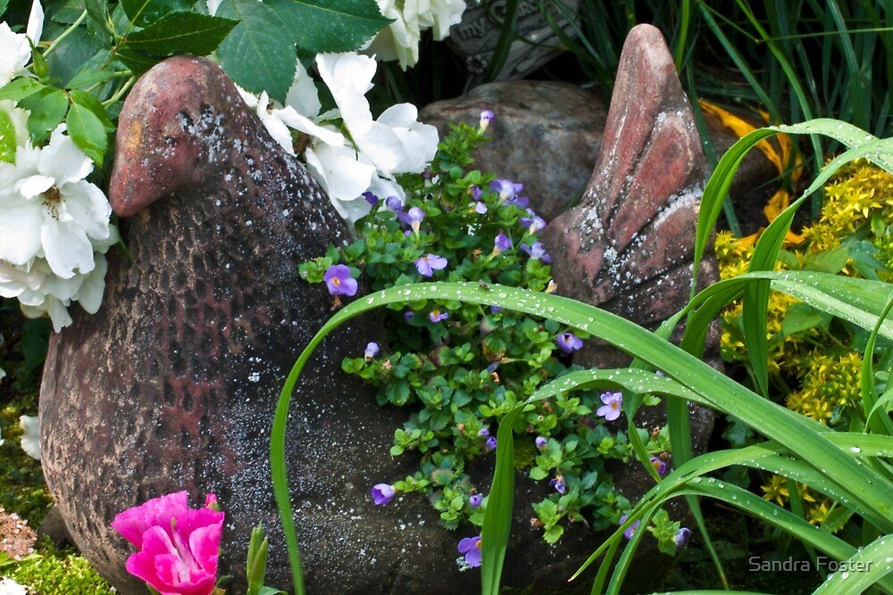 Hen Planter Among The Beauty by Sandra Foster