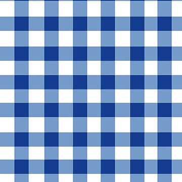 GINGHAM WHITE AND BLUE by IMPACTEES