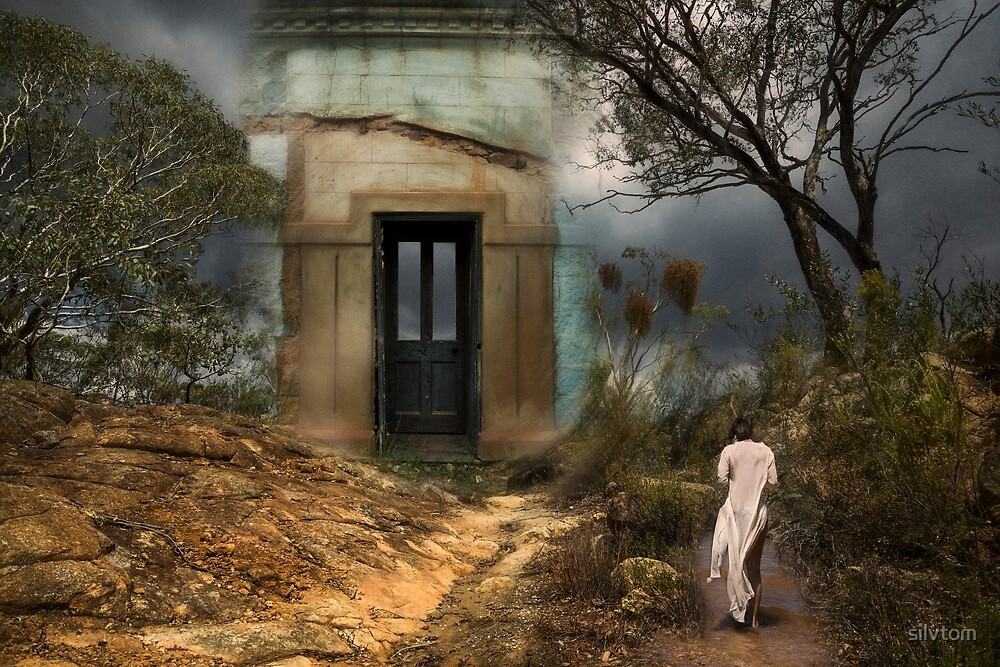 The Door by Silvia Tomarchio