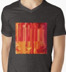 234127042017 Mens V-Neck T-Shirt