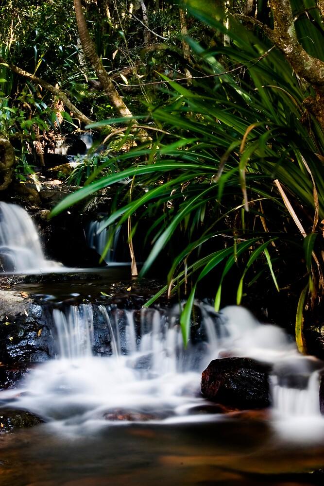 Waterfall by Alecia Scott