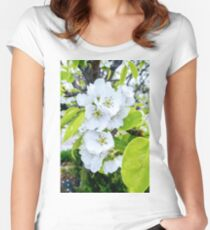Apple Blossoms After Snow Women's Fitted Scoop T-Shirt