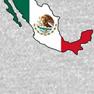 Mexico Flag and Outline by HandDrawnTees