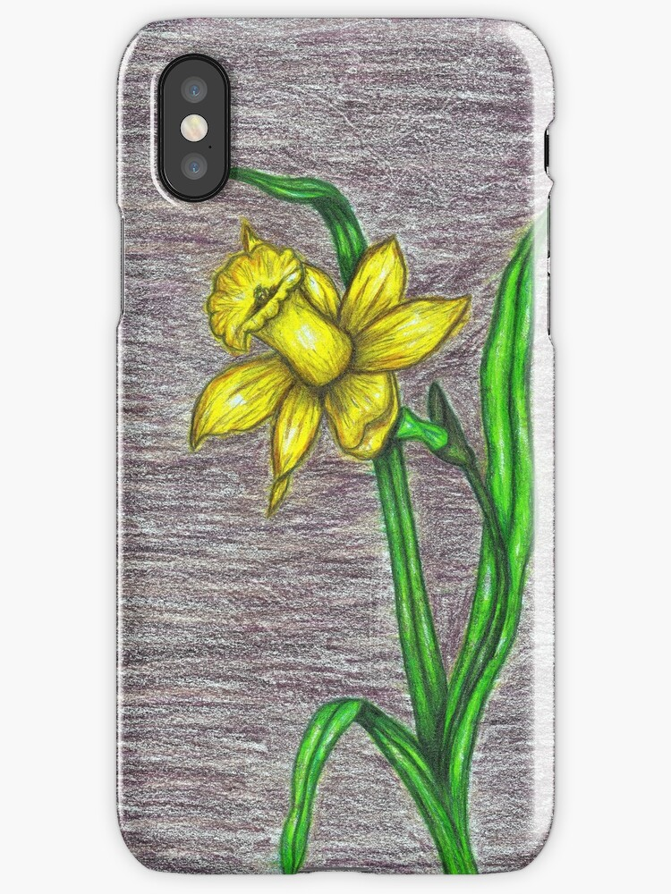 Daffodil by artcolors
