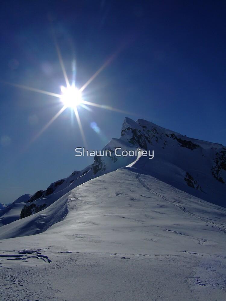 Whistler Peak by Shawn Cooney