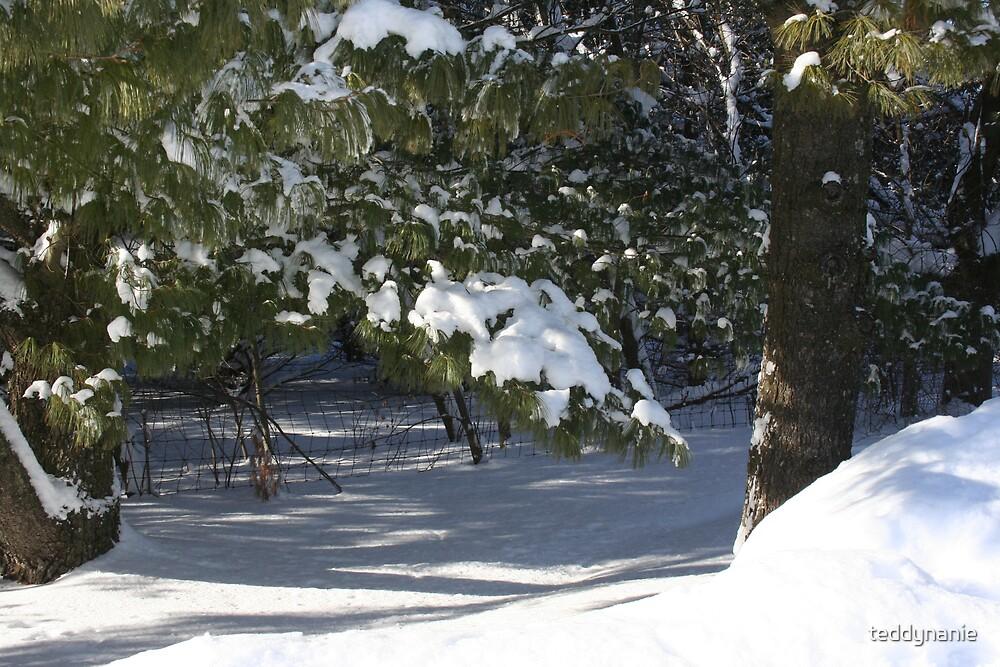 snowfall,wi by teddynanie