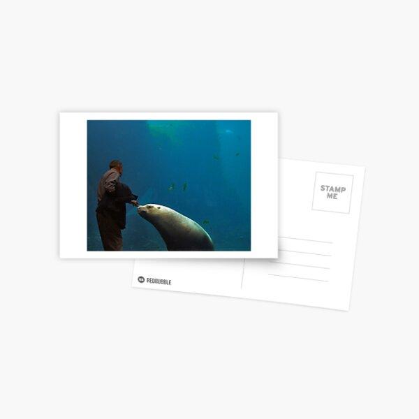 Cautive Postcard