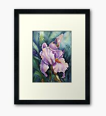 Iris in water colour Framed Print
