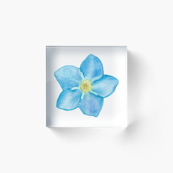 Forget me not Acrylic Block