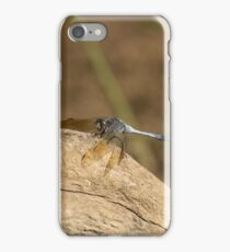 Blue Skimmer  iPhone Case/Skin