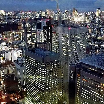 View of Tokyo at Nightfall by Kathryn8
