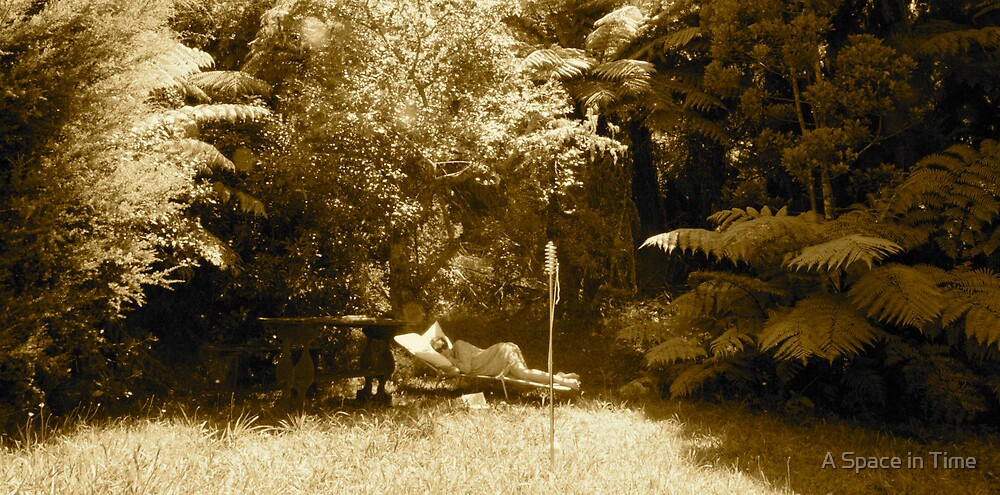 bliss in the bush by A Space in Time