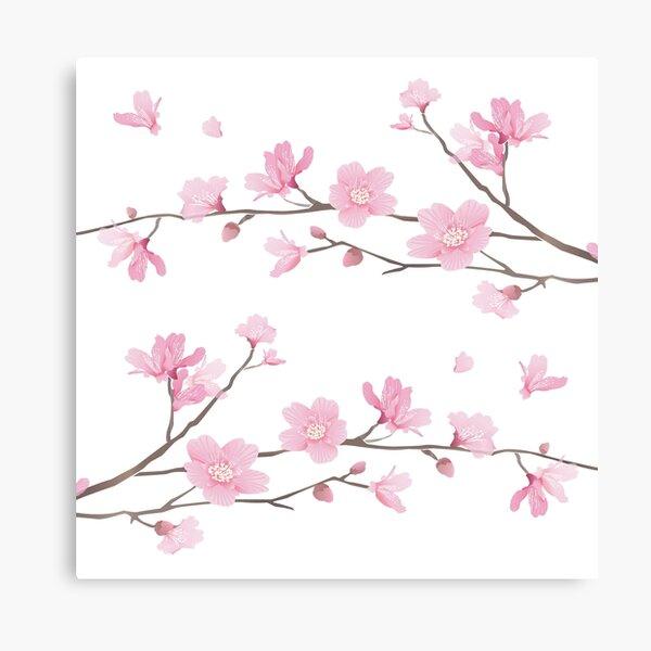 Cherry Blossom - Transparent Background Canvas Print