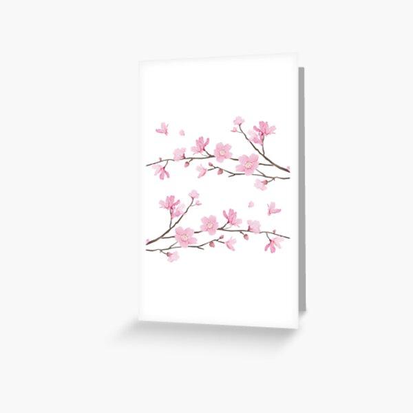 Flor de cerezo - fondo transparente Tarjetas de felicitación