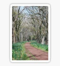 Wandering Path Sticker