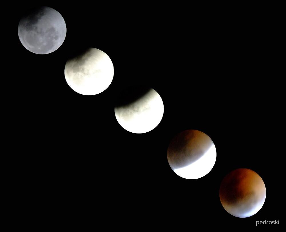 Lunar Eclipse by pedroski
