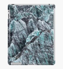 Fox Glacier 5 iPad Case/Skin