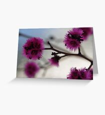 Silken Greeting Card