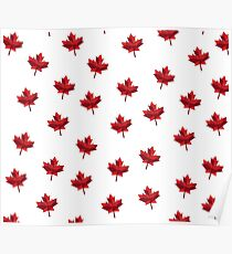 Geometric Maple Leaf Poster
