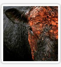Hamilton the Angus bull Sticker