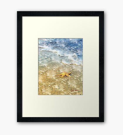 Wish for a Star Framed Print
