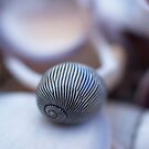 Shell Stripe by Jo  Young