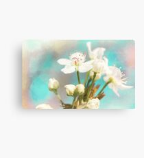 Fruit Blossom Painting Canvas Print