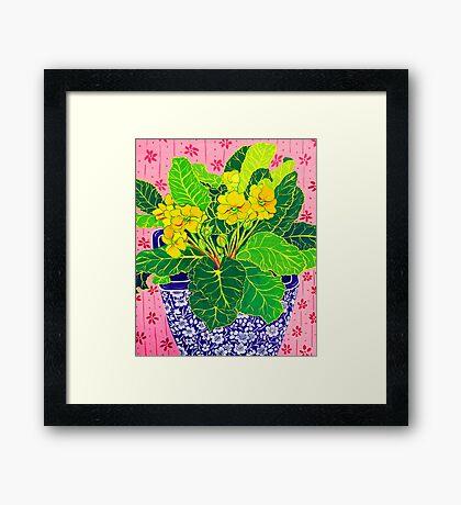 Pretty Primulas Framed Print