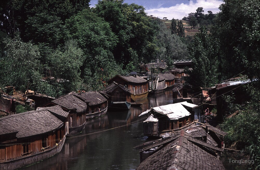 houseboats - shrinagar  - Kashmire - india by TonyLegg