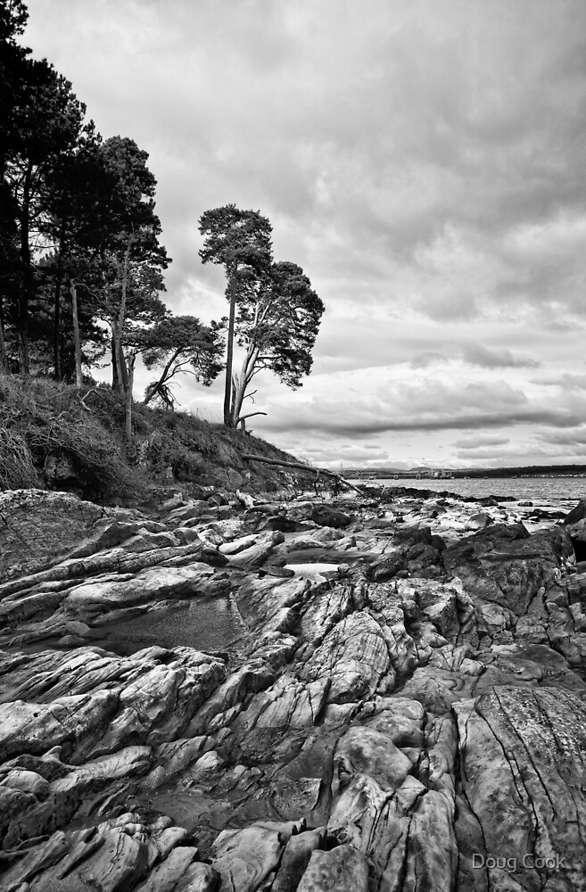 Rocks & Pools by Doug Cook
