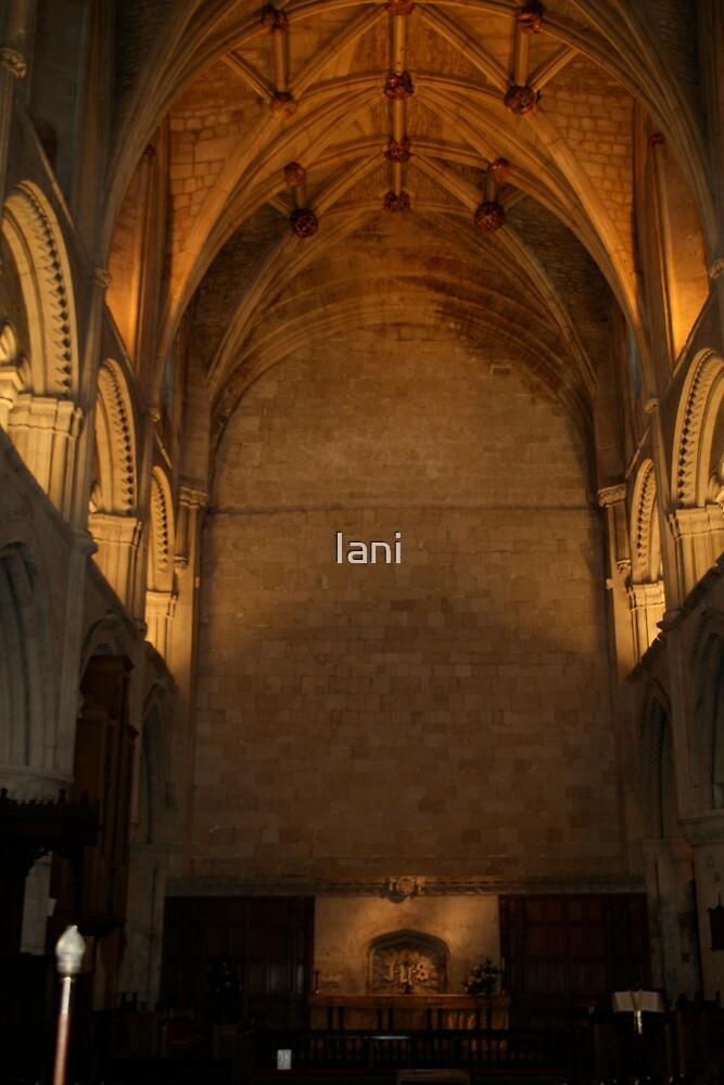devotion by Iani
