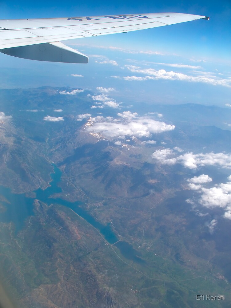 Below plane wing by Efi Keren