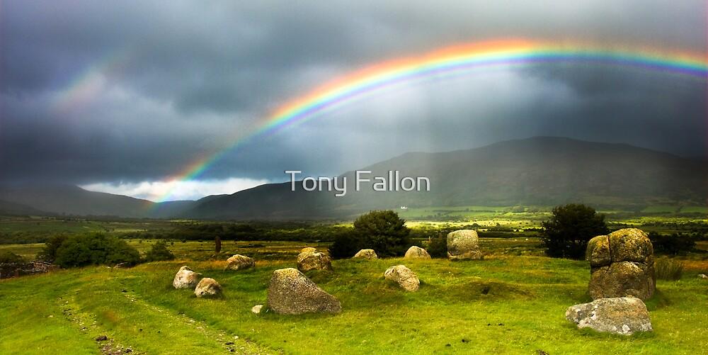Arran Bow by Tony Fallon