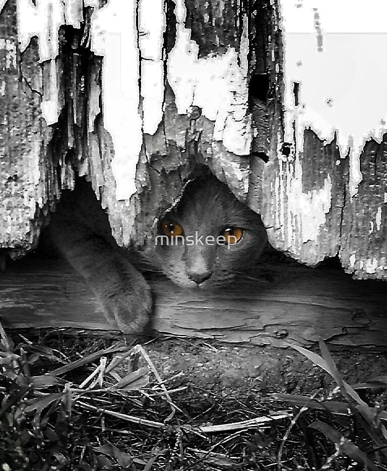 Peeking by minskeep