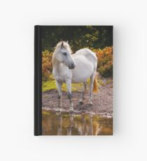 Equine Reflections Hardcover Journal