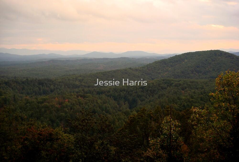 Distance by Jessie Harris
