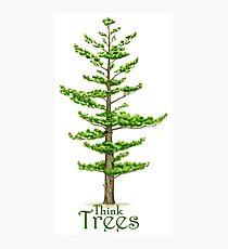 Think Trees Photographic Print
