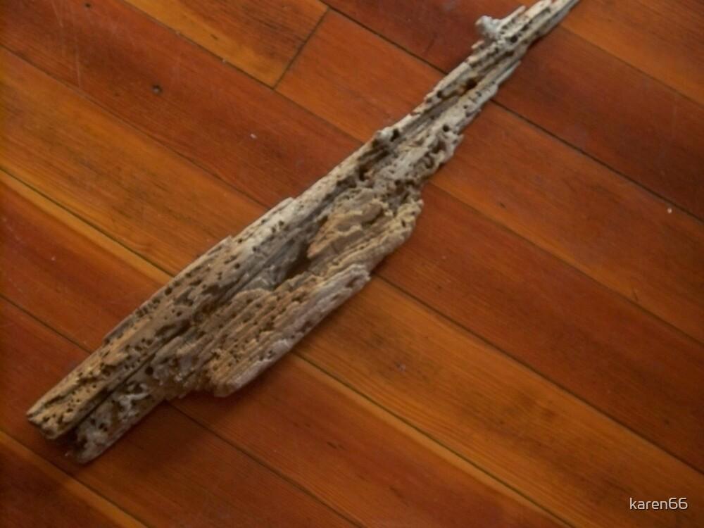 Driftwood by karen66
