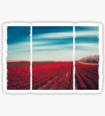 1000001 TULIPS Sticker