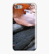 Leaves and Mudstone iPhone Case/Skin