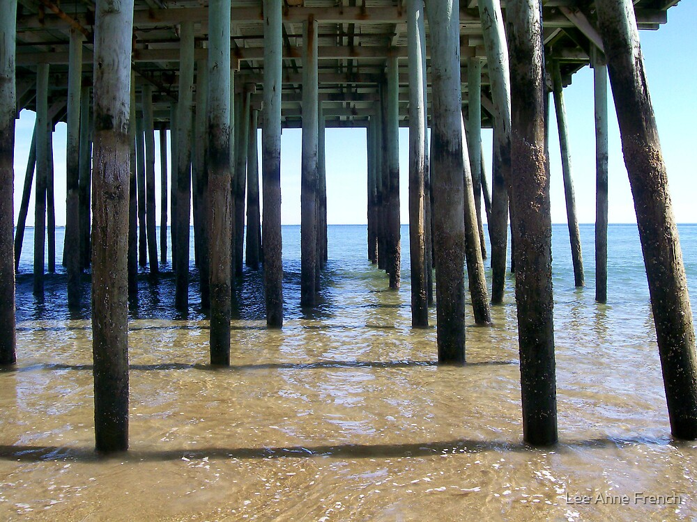Under the Pier by Lee Anne French