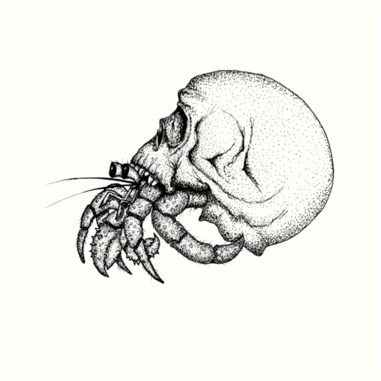 Láminas artísticas «Cráneo cangrejo ermitaño» de SpacoMakaco | Redbubble