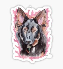 Alsatian - Border Collie Sticker
