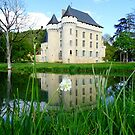 Chateau campagne by DES PALMER