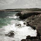 The Shore by Hena Tayeb